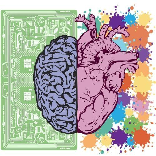La neuropédagogie – Qu'est-ce que c'est?